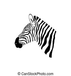 Black and White Zebra portrait with side view. Head sketch...