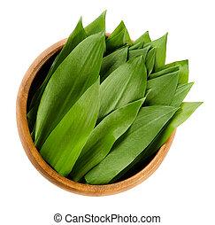 Ramsons, Allium ursinum in wooden bowl - Ramsons in wooden...