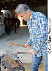 Farrier using hammer on anvil