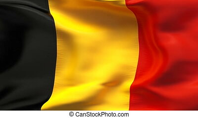 Textured BELGIUM cotton flag