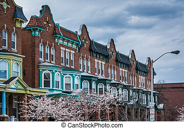 Cherry blossoms and row houses on Calvert Street in Charles...