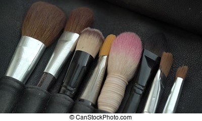 Professional makeup brushes in a leather bag