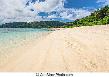 Seychelles, ilha,  Mahe,  royale, praia,  Anse