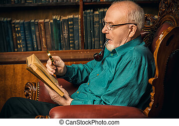 reading memoirs at home - An old intelligent man reading a...