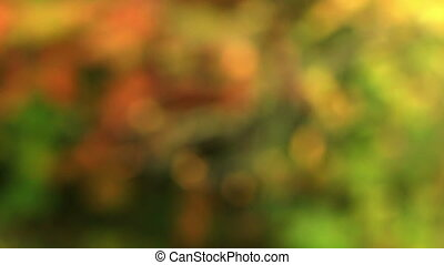 Abstract autumn background - Abstract autumn (background of...