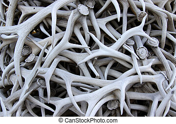 Antlers - Many deer and elk antlers are piled and decorated