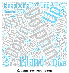 A Close Encounter with Wild Dolphins text background word...