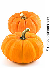 Miniature pumpkins on white background with copy space,...