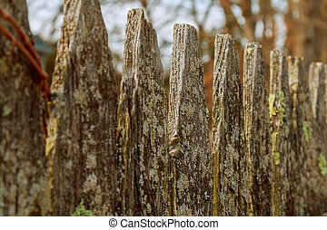 Wooden fence entangled barbed wire background - Wooden fence...