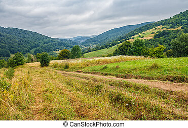 countryside summer landscape with field, forest and mountain...