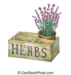 Flower pot with lavender in an old wooden crate garden.