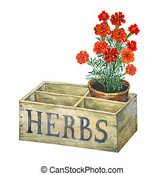 Flower pot with marigolds in an old wooden crate garden.