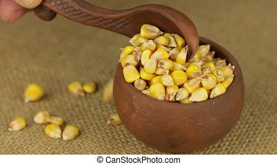 Hand with a spoon to pour the corn grain from a rotating...