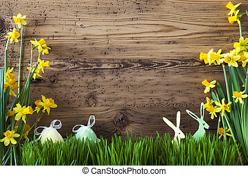 Easter Decoration, Gras, Copy Space - Wooden Background With...