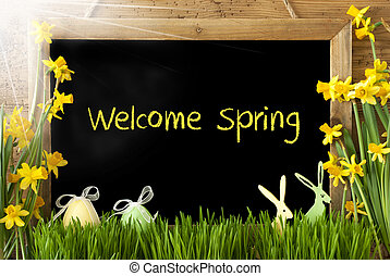 Sunny Narcissus, Easter Egg, Bunny, Text Welcome Spring -...
