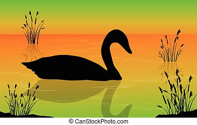 Vector illustration of swan on the lake scenery