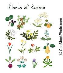 Plants of Eurasia vector set