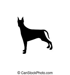 black figure doberman pinscher dog animal vector...