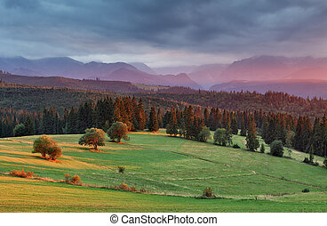 Sunset in Poland mountain with forest
