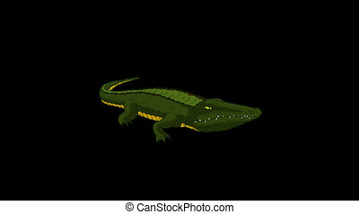 Crocodile Alligator Open his Mouth. Animated Motion Graphic...