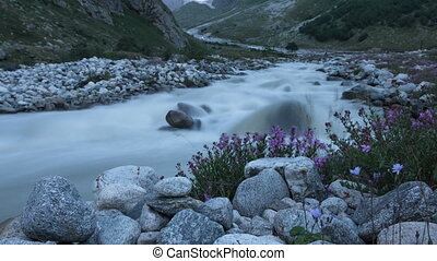 Mountain river and flowers. Time-lapse - Mountain river and...