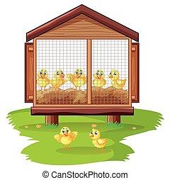 Little chicks in chicken coop illustration
