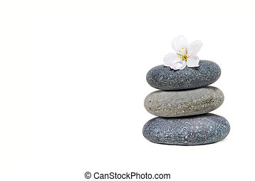 Zen Like - spa stones and flower