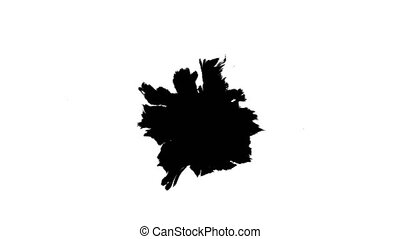 Ink drops on wet paper 19 - Black inks drop on wet paper....