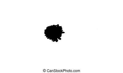 Ink drops on wet paper 24 - Black inks drop on wet paper....