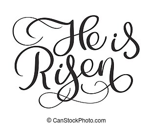 He is Risen text on white background. Calligraphy lettering...