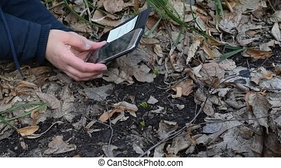 Woman makes a photo of young sprouts or plants in a forest...