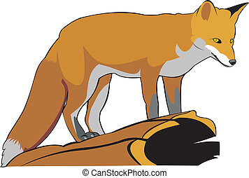 fox - the art illustration of one red fox