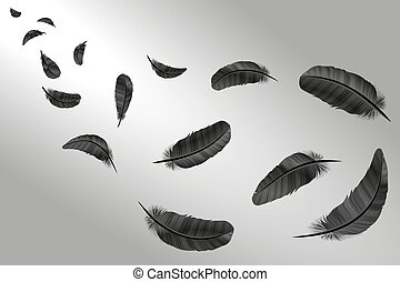 Feathers vector set in a 3d style. Icons feathers isolated on a light background. Collection of silhouettes of dark feathers. Simple icons feathers as elements for design.