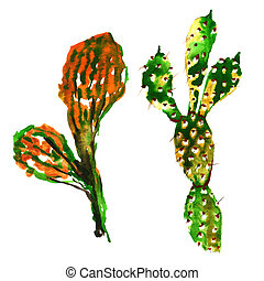 Tropical cactus tree in a watercolor style isolated....