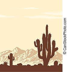 Sunset in desert with cactuses - Sunset in lifless stone...