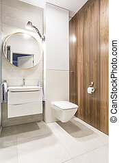Modern toilet with white walls and a mirrow