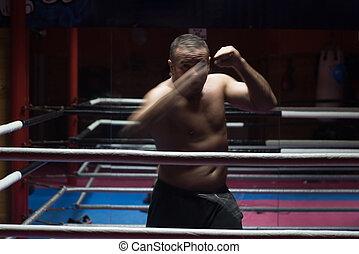 kickboxer, treinamento, anel, profissional
