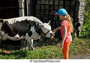 Little girl stroking a cow. Friendship