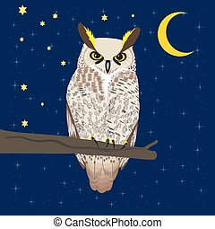 Owl sitting at woods under moon