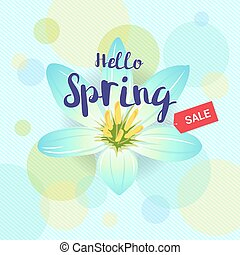 Floral spring with light blue flower and colorful background
