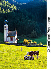 The famous church of Santa Magdalena in green Alpine...