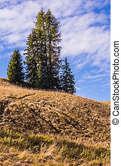 Lovely hill in the fall - Lovely hills in the early fall....