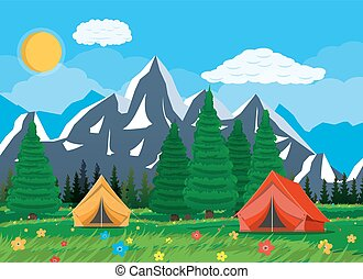 Meadow with grass and camping.