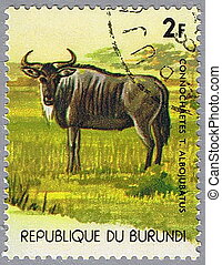 Gnu - REPUBLIC OF BURUNDI - CIRCA 1977: A stamp printed in...