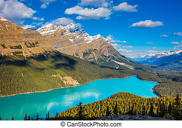 Lake Peyto in Banff National Park