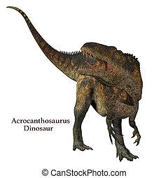 Acrocanthosaurus Dinosaur Tail - Acrocanthosaurus was a...
