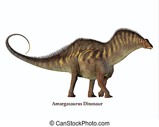 perfil, fuente, lado,  amargasaurus