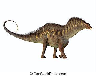 perfil, lado,  amargasaurus