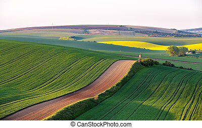Shooting box on spring green fields of Czech Moravia -...