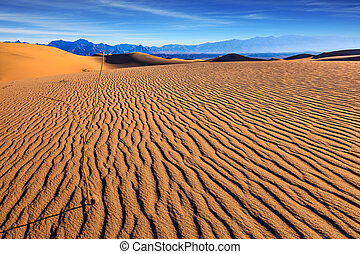 Sunny morning in a picturesque part of Death Valley. Thin...